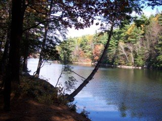 photo of Mashapaug Pond in Bigelow State Park, Connecticut