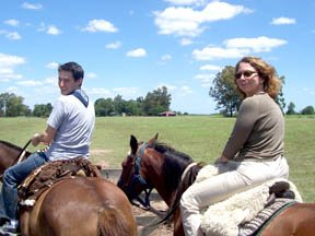 Harpy on Horseback