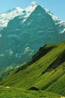 En descendant du Wildgärst vers la Grosse Scheidegg, en face du Wetterhorn