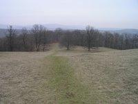 Sur le chemin de Sissi, au dessus de Kaltenleutgeben
