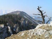Autriche, Wienerwald, le Hochschneeberg est le premier 2000 des Alpes