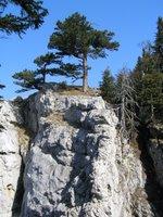 Sur la Dürre Wand, des rochers calcaires