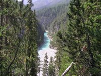 Dans le parc national, entre Zernez et le Pass dal Fuorn