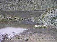 Les Grisons: de l'eau et des cailloux