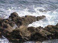 Durant la pause, sous nos pieds bouge la mer...