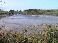 Un bras de mer de plusieurs kilomètres à l'intérieur des terres se nomme un Aber. Voici l'Aber Ildut, une diversité écologique fascinante.