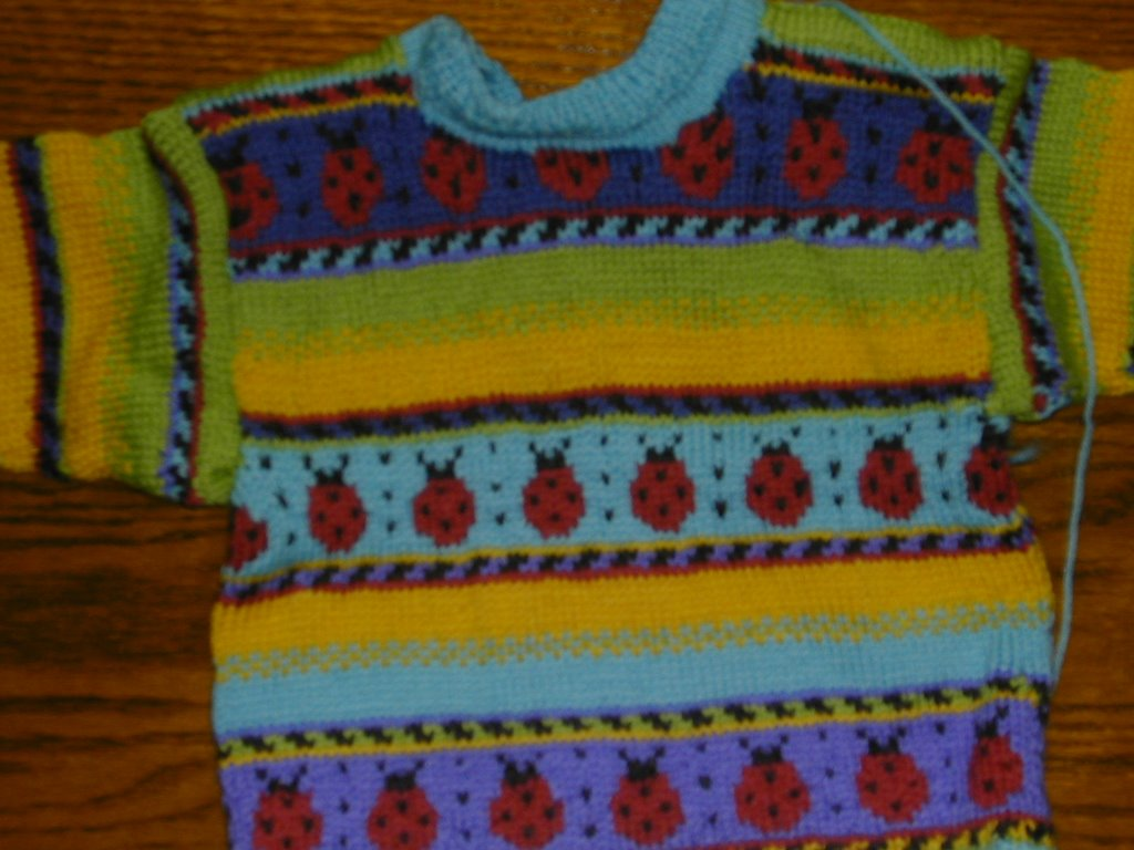 f65a84590 A house made of wool  Dale Lady Bug Sweater