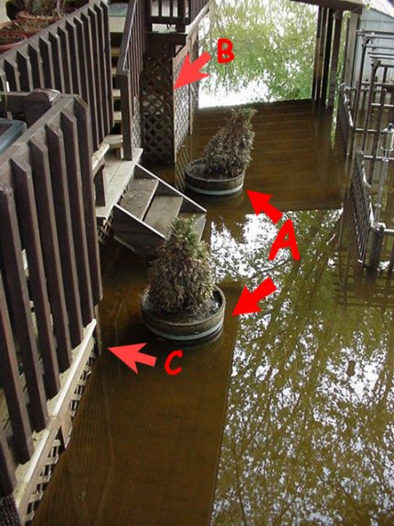 Flood Mystery optical illusions image