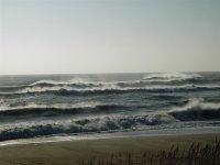 dune view of wind-blown surf from Ego Beach, Avon.
