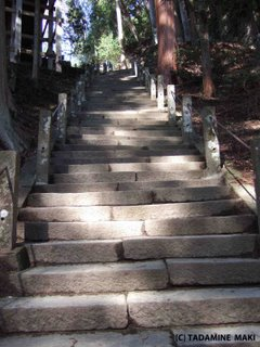 Murouji Temple, Nara