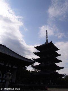Kofukuji Temple, Kyoto sightseeing