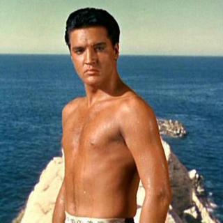 Elvis the diver