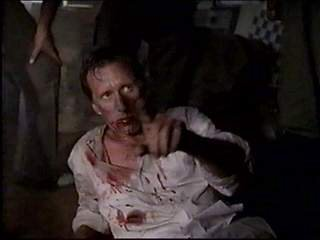James Woods as Richard Boyle