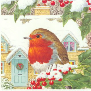 english robin on christmas card