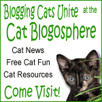 http://catblogosphere.blogspot.com