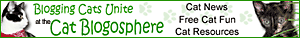 http://catblogosphere.blogspot.com