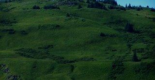 hills near 50f set