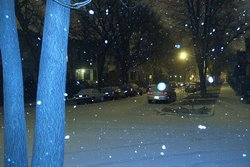 my street in zeee snow
