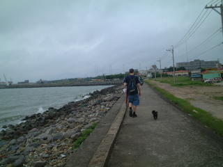 Walking along shore with stray black puppy dog in Taiwan by Fisherman's Wharf