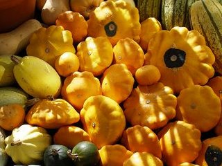 Bright orange squashes