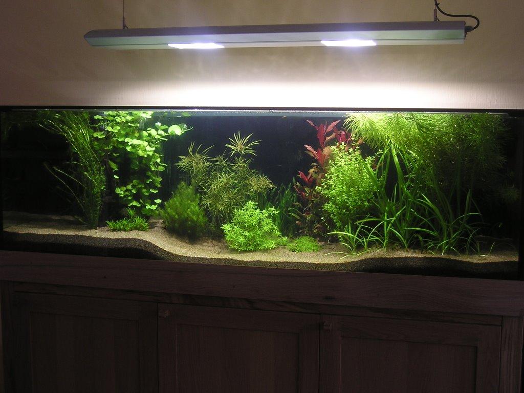 hornbach akvarium