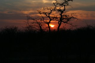 ...The sunsets in Africa.