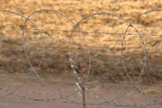Barbed wire on the border of Zimbabwe and South Africa:  A visual reminder of past political tension from over fifteen years ago...