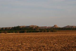 Farm land...
