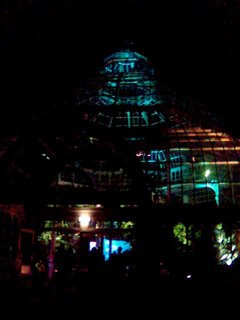 Palm House, lights from outside