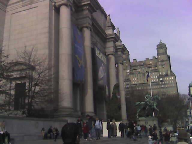 Nominal me things to do in new york the american museum for Things to do in central park today