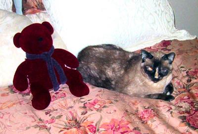 Hakuna and Ted