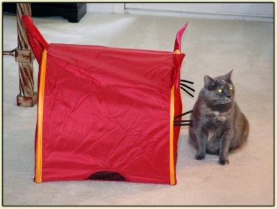 Tata Tent 1
