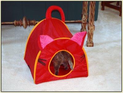 Tata Tent 3