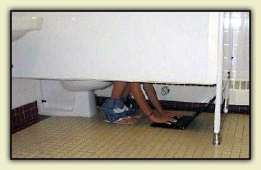 Toilet Bloggin'