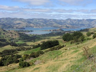 Photo taken by Rullsenberg: The view from Hilltop to Akaroa bay, South Island, New Zealand