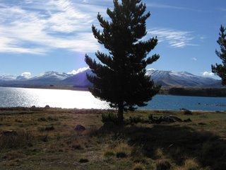 Photo by Rullsenberg: Lake Tekapo, New Zealand