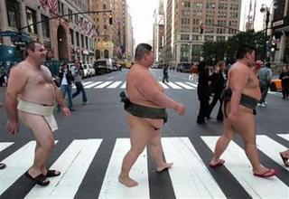 sumo in NY