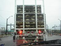Not the truck I was behind but a close relative.