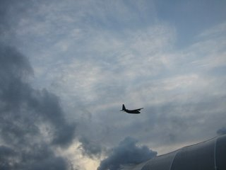 Low-flying aircraft above our polytunnel