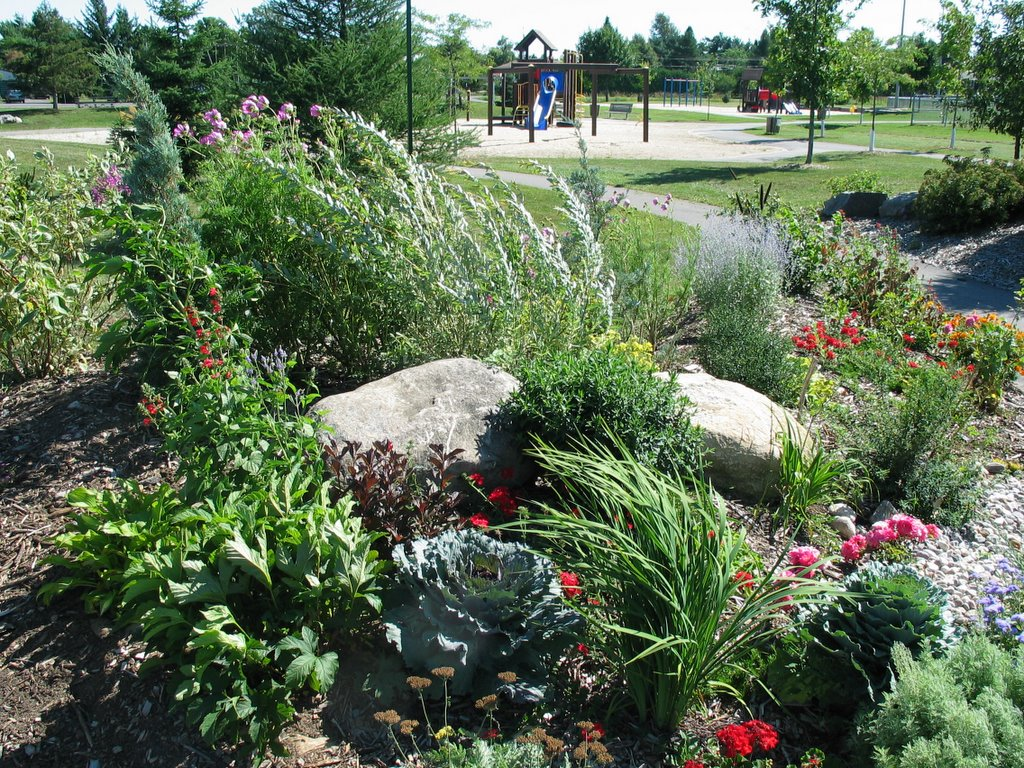 Osgoode public garden creative xeriscaping in the osgoode for Backyard landscaping plants