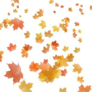 learn how to create autumn leaves in photoshop using this tutorial