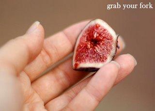 fresh fig sample