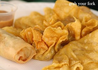 Fried wontons and springrolls