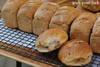 Infinity Sourdough breads