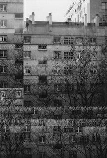 tasting aloneness: greyness