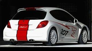 Peugeot 207 RCup 4