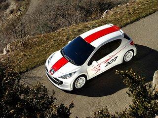 Peugeot 207 RCup 3