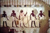 Ancient Egyptian Surveyors
