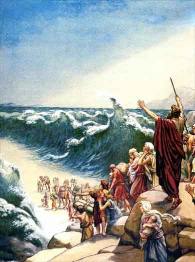 escape from the red sea essay Oedipus rex essays essay papers avaliable: one finds in life exactly what one contributes escape from the red sea devastated asia.