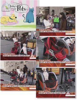 Pet Strollers on the Today Show